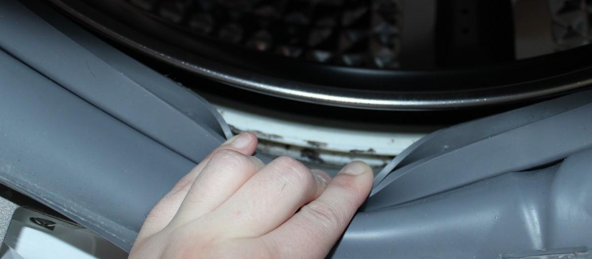 грибок в стиральной машине изображение